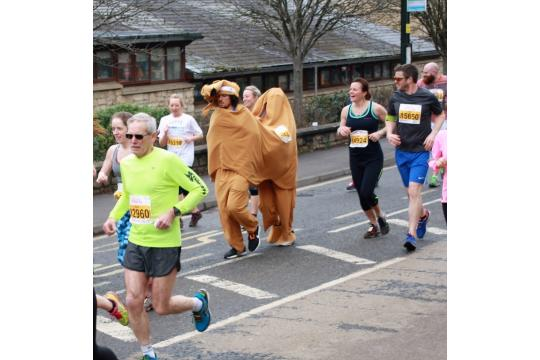 13.1 Miles In A Vegetable Costume For Charity